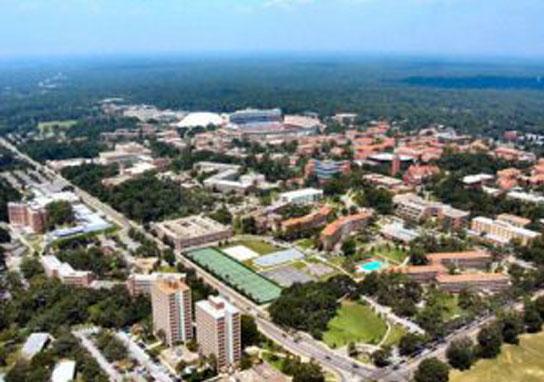 Walker Wins University Of Florida Parking Study Project