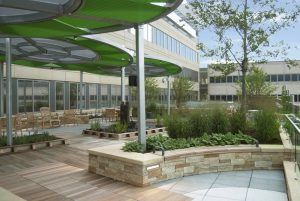 osf-saint-francis-medical-center-respite-garden-10