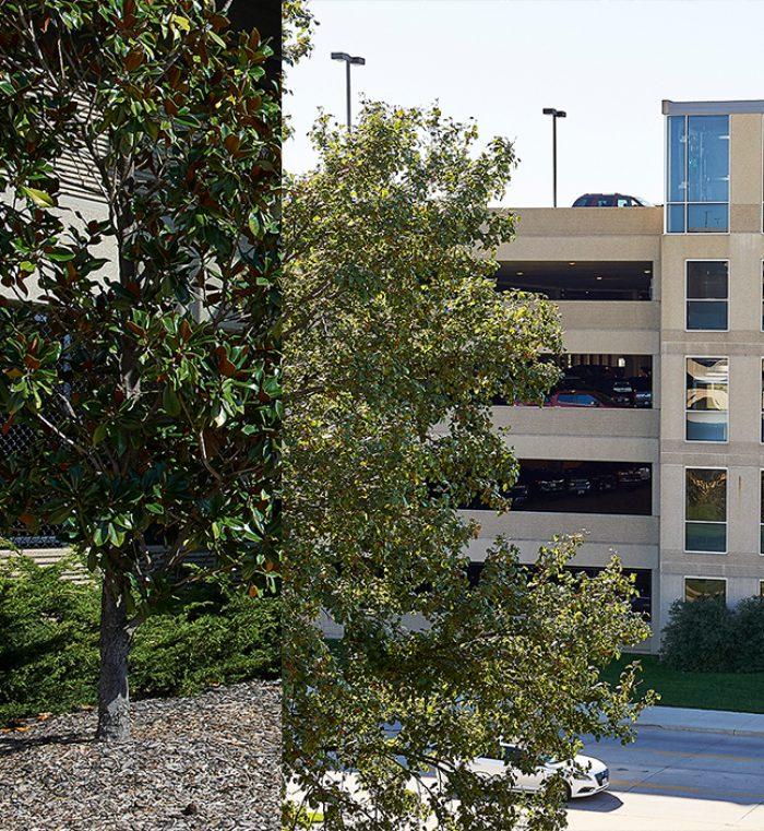 Arbors Of East Atlanta: University Of Missouri Parking Structure #7